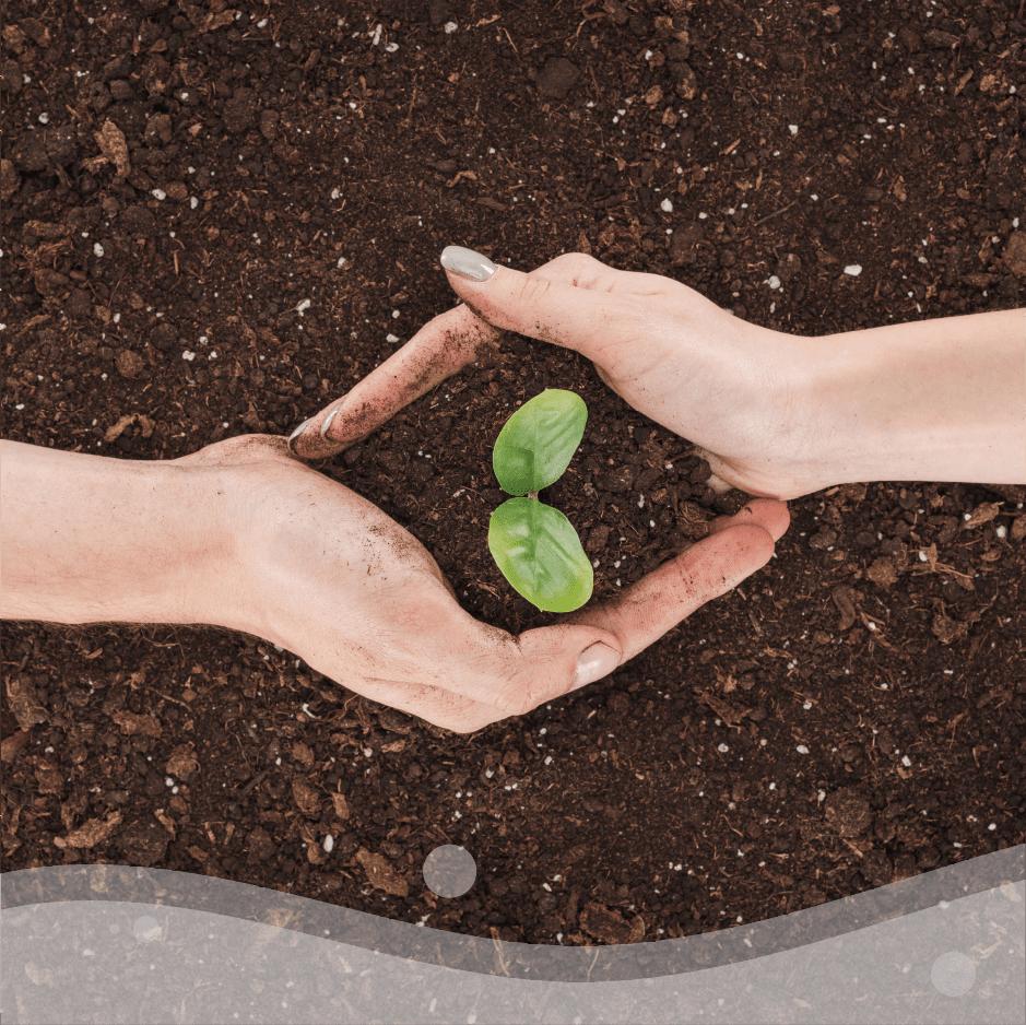 PROTEGGERE il raccolto, gli animali e le piante